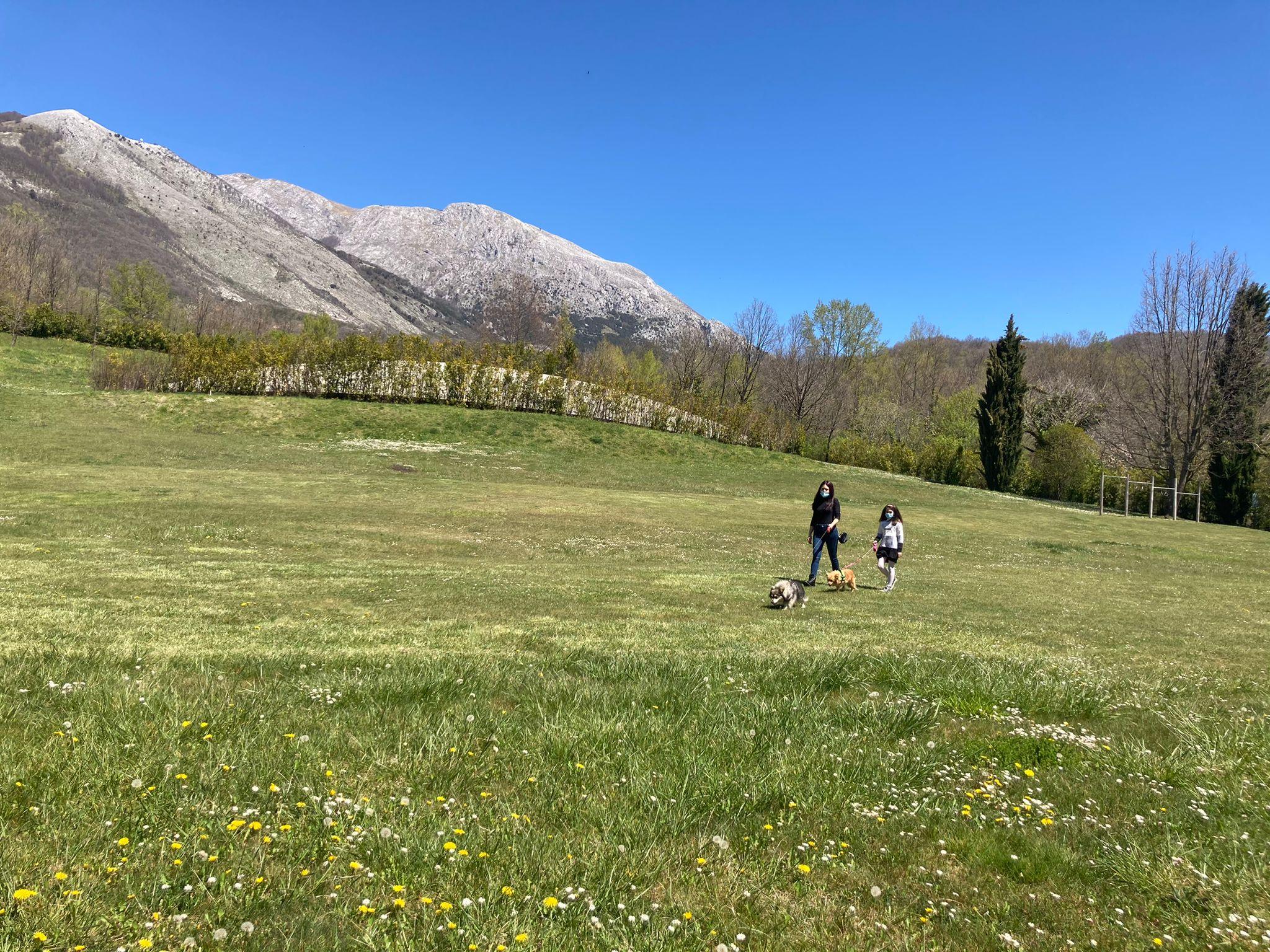 Vacanze nei borghi italiani con gli amici a 4 zampe: cosa portare