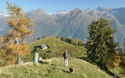 Un itinerario pet friendly partendo da Valnegra
