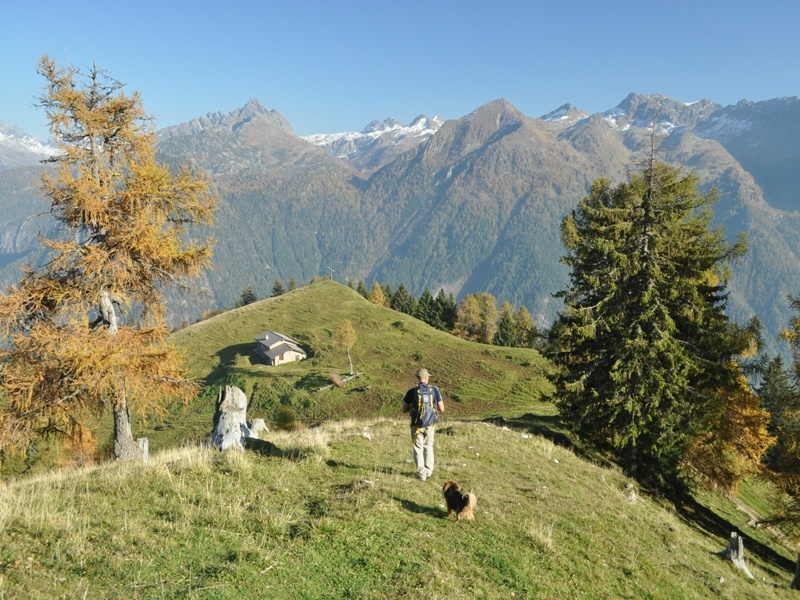 Un umano e il suo amico a 4 zampe sul Monte Torcola - Foto: altobrembo.it