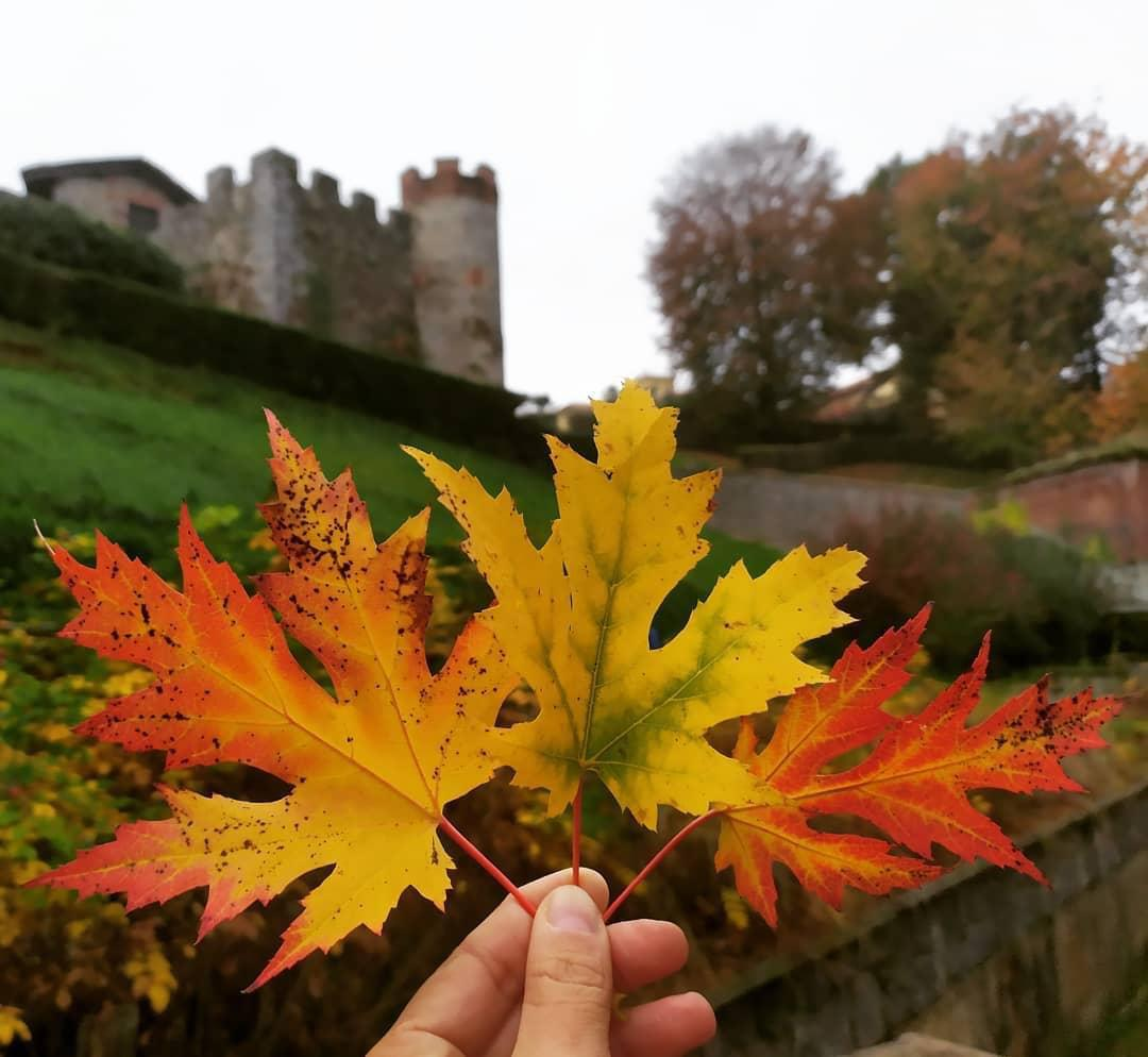 Candelo in autunno