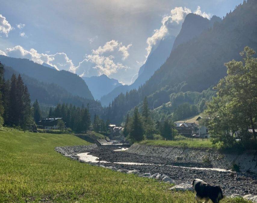 Due attività pet friendly da fare a Sottoguda, borgo dog del Veneto