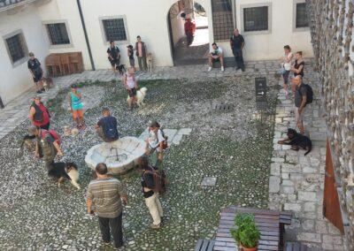 Venzone - Visita cani - Foto: Michela Stefanutti
